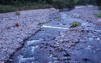 川を見たら - ふらりぶらりの旅日記