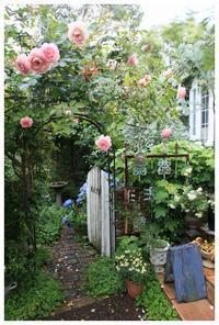 6月初旬の景色です - natu     * 素敵なナチュラルガーデンから~*     福岡で庭造り、外構工事(エクステリア)をしてます