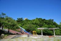 松山総合公園ウォーク(7月)④ - かたくち鰯の写真日記2