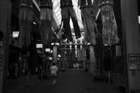 アーケードの七夕20200701 - Yoshi-A の写真の楽しみ