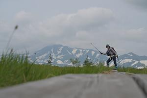 【大雪の奥座敷】クチャンベツから沼ノ原へ 2020.7.4 - やぁやぁ。