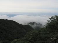 赤城小沼から銚子の伽藍・長七郎山周回2020.7.5(日) - 心のまま、足の向くまま・・・