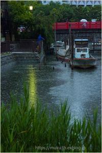 今日も雨・雨 - muku3のフォトスケッチ