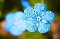 雨の日は何をする - 更年期障害で引きこもり主婦のブログだけど読む?