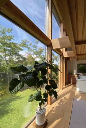 Q1住宅L3モデル能代:7月6日9時の太陽高度 - 家づくり西方設計