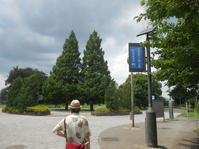 6月最後の調布散歩。その1知らなかった場所がありすぎ。 - のび丸亭の「奥様ごはんですよ」日本ワインと日々の料理