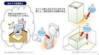 【被災する前の準備】大型ポリ袋 - お散歩アルバム・・磯菊の秋