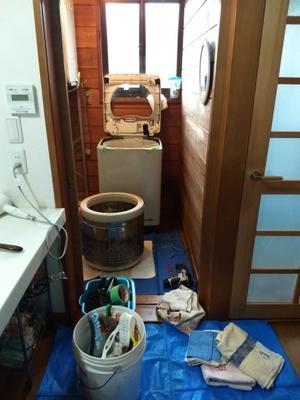 洗濯機ピカピカに - Rose&Farm