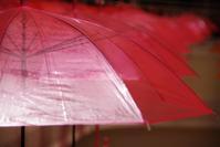 「雨降る人生ならば」 - 光と彩に、あいに。