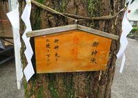 田無神社に行って来ました・2 - 月の旅人~美月ココの徒然日記~