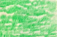 草原みたいなラグ - yukaiの暮らしを愉しむヒント
