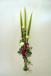 6月のNHK文化センター普通科の花は「バーティカル」 - クレッセント日記