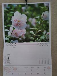 7月 - 福岡おでかけと食日記