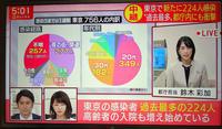 東京で新規感染者224人確認1日あたり過去最多 - 東金、折々の風景