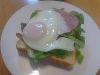 今日の朝食_ハムエッグトーストとニンジンスープ(冷製)、そしてイヌ - Hanakenhana's Blog