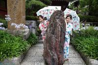 20200705_企画撮影 鎌倉周辺 1 - とし写真