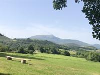オーベルジュ バスク L'Auberge Basque - 庭のかたち-Les formes de mon jardin- Ikuyo Pupier