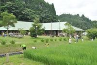 ベストドレッサー賞 - 千葉県いすみ環境と文化のさとセンター