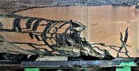 神代欅製材時の割れの模様 - SOLiD「無垢材セレクトカタログ」/ 材木店・製材所 新発田屋(シバタヤ)