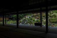 サツキ咲く智積院 - 花景色-K.W.C. PhotoBlog
