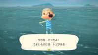 【Switch】「あつ森」新たに獲得した「海の幸」を博物館に寄贈して、生物学を勉強する!! - ゲームに漫画、時々看護師
