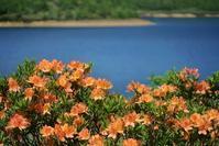 新緑の野反湖 - ウィンパパのフォトライフ(2)