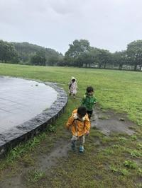 雨の日の里山公園 - 茅ヶ崎藤沢の青空自主保育てぃだのふぁブログ