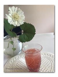 リフレッシュ - 雪割草 - Primula modesta -