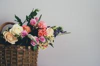 元気でいるのが当たり前、ではない - 更年期障害で引きこもり主婦のブログだけど読む?