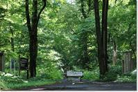 野幌森林公園('20・7・9) - 花日記
