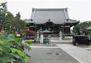 ちらっと本覚寺に+鎌倉スイーツ(2020.07.13) - フランス語と、鎌倉と、私と。。。