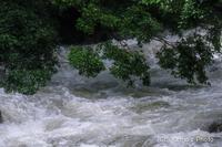 雨の降った後に - 撃沈風景写真