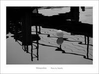 飛んで来た風船 - Minnenfoto