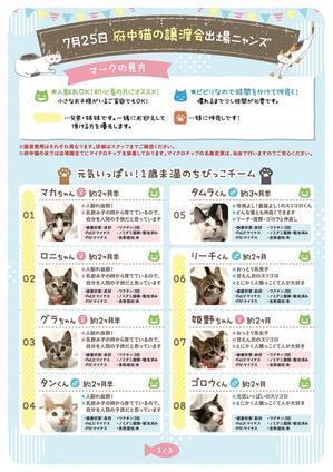 【子猫多数出場】完全予約制 譲渡会開催の概要  - NPO法人 府中猫の会