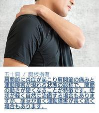 五十肩/肩板損傷 整形外科の主たる疾患 - たてやま整形外科クリニック リハスタッフブログ