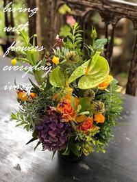 本日もIVORY始まります。 -  Flower and cafe 花空間 ivory (アイボリー)