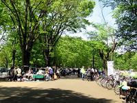 再び小金井公園のフリーマーケット - Der Liebling ~蚤の市フリークの雑貨手帖3冊目~