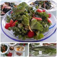 空心菜で楽しむ♪ - 気ままな食いしん坊日記2