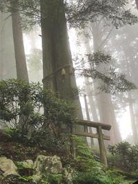 2020年の三峯神社② - ねこちんの日常