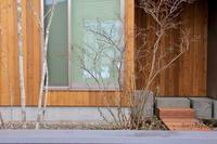 時の流れ - 三楽 3LUCK 造園設計・施工・管理 樹木樹勢診断・治療