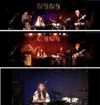 槌谷知佳のシンガーソンガー Specialバンドワンマン ライブ(配信)@都雅都雅 2020.7.4 - Guitarのひとりごと