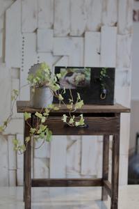 DIYでサイドテーブルを作りました! - ゆきなそう  猫とガーデニングの日記