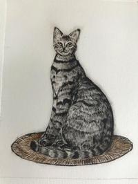 猫スケッチ練習帳紙版画 - ~メインクーンと一緒~デナちな日々
