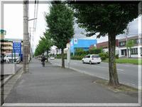自転車の交通ルール - 日々つれづれに