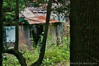 ある廃村落 - Mark.M.Watanabeの熊本撮影紀行