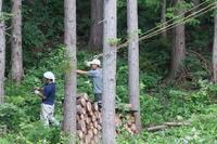 休憩用のウットデッキ制作開始 - 福島県南会津での山暮らしと制作