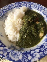 サグチキンカレー、mujiのジャスミンライス - 地上50mでも野菜はできました、そして3mへ
