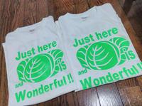 Cabbage T-shirts 2020 - 「ナ」がカタカナな理由(わケ)!!