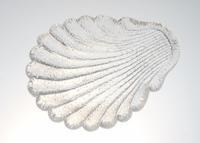 バカラ 氷の貝殻の小皿 - GALLERY GRACE ギャラリーグレース BLOG