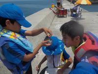 海つりに挑戦! - 子どものための自然体験学校「アドベンチャーキッズスクール」